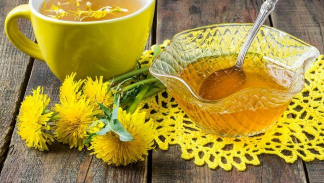 Flori de păpădie în tratamentul artrozei, Navigation menu