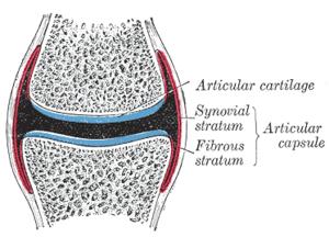 capsule de boală articulară