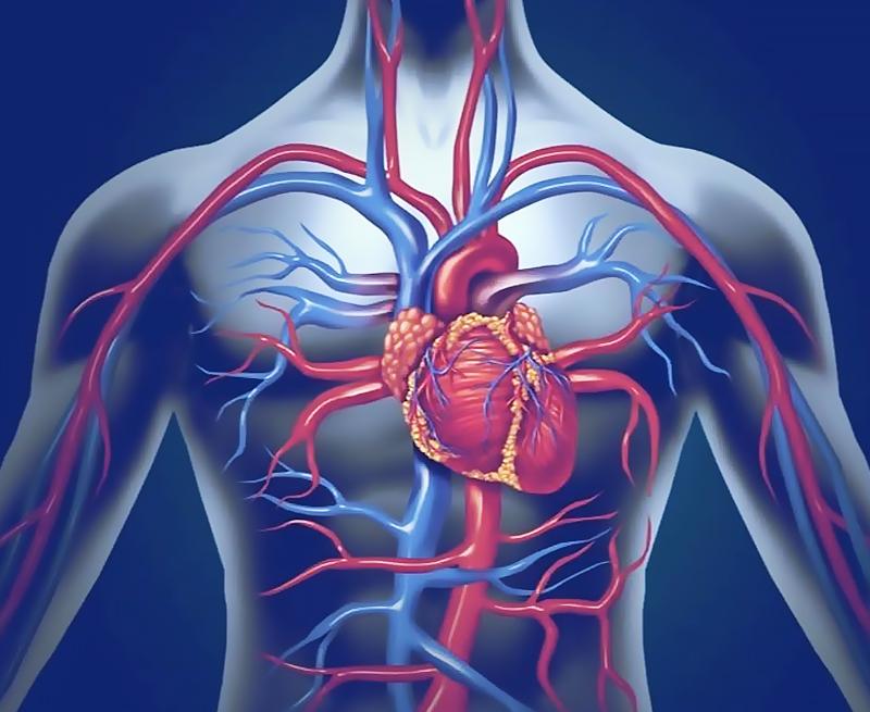 Cum se tratează artrita degenerativă | centru-respiro.ro