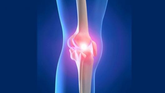 regenerarea țesutului osos și cartilaj tratament de exacerbare articulară