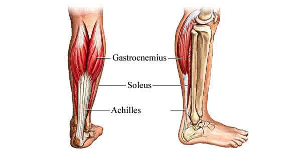 articulația doare și dă în gambe