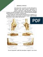 tratamentul artritei cu artroza cotului)