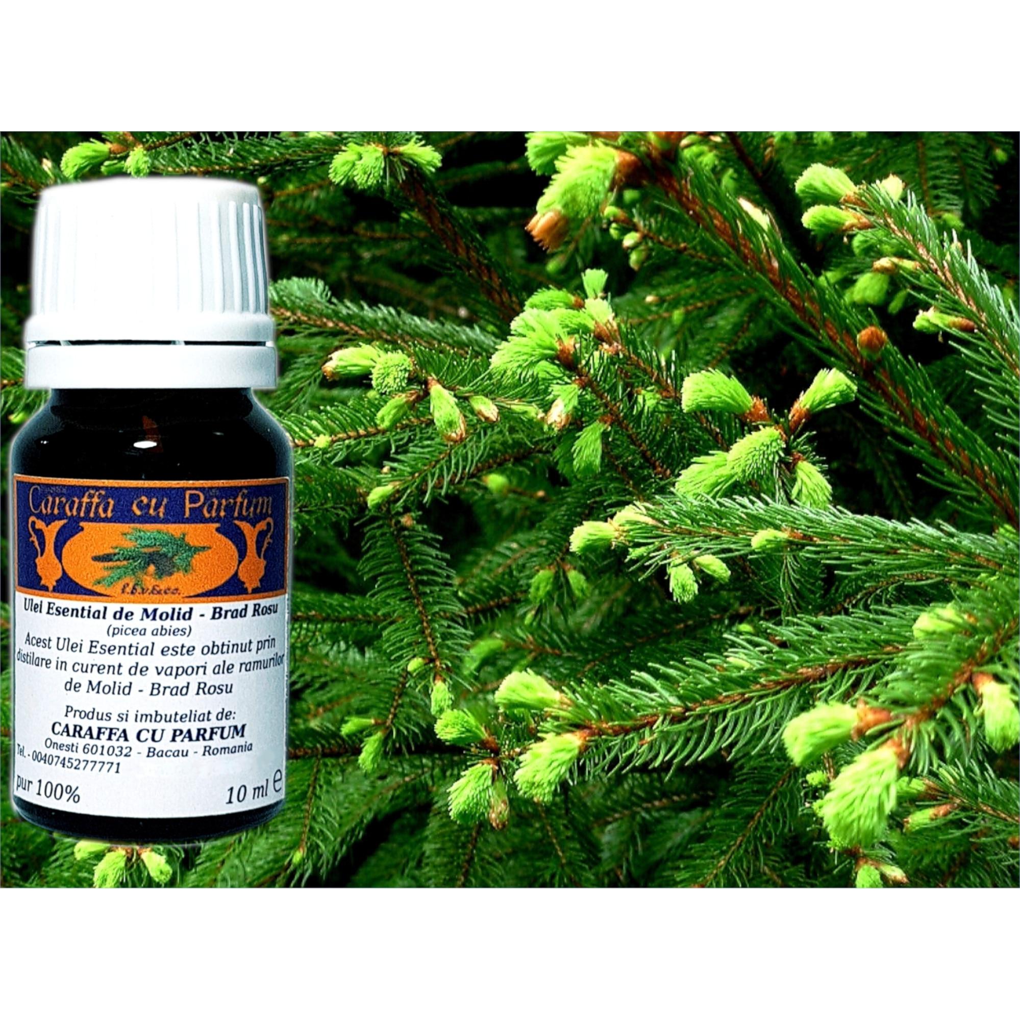 tratarea artrozei cu ulei de brad