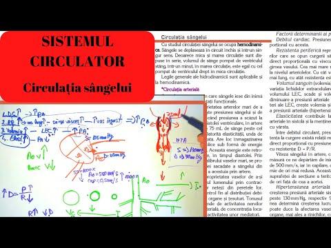semne de artroză a articulațiilor șoldului 2 grade)