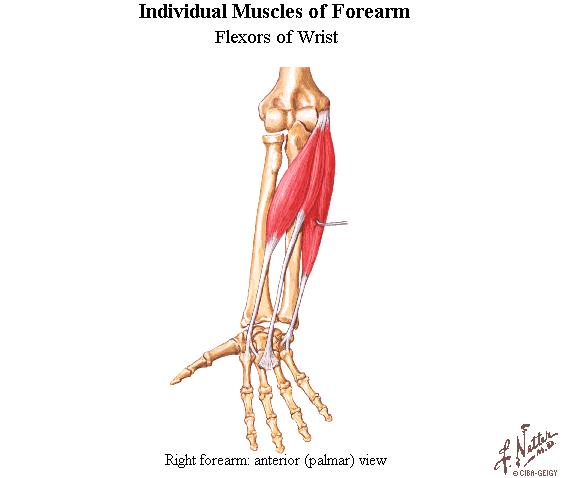 durere ascuțită a articulației degetului mare
