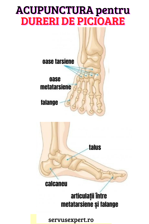 dureri de picior 5 articulație)