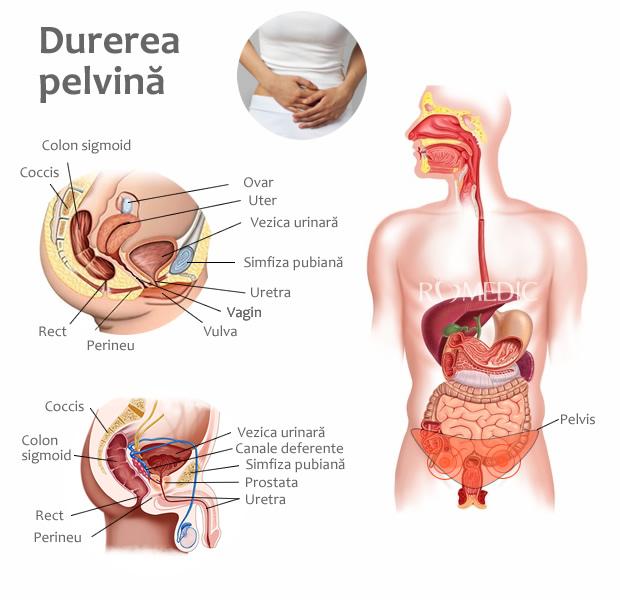 anemie dureri articulare pelvine