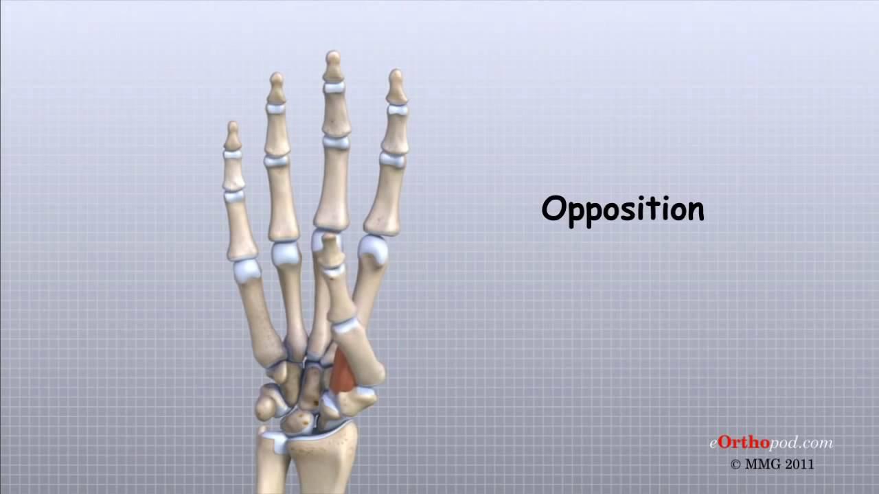 Bump pe articulația degetului mare Bump pe articulația tratamentului degetelor