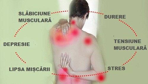 Cum elimini acidul uric din articulații   Boli şi tratamente, Homepage Slider, Sănătate   centru-respiro.ro