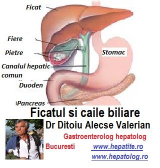 tratament articular cu bila biliara medicala)