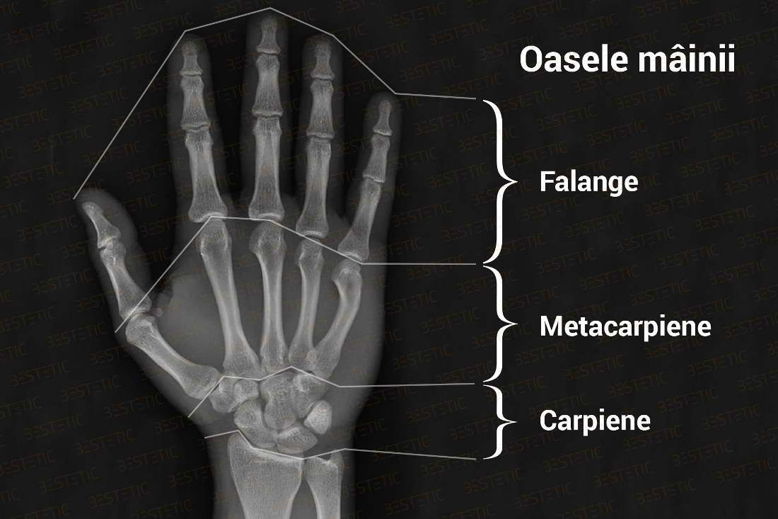 articulația încheieturii mâinii drepte doare