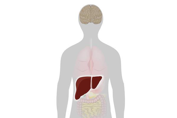 ficatul bolii articulare)