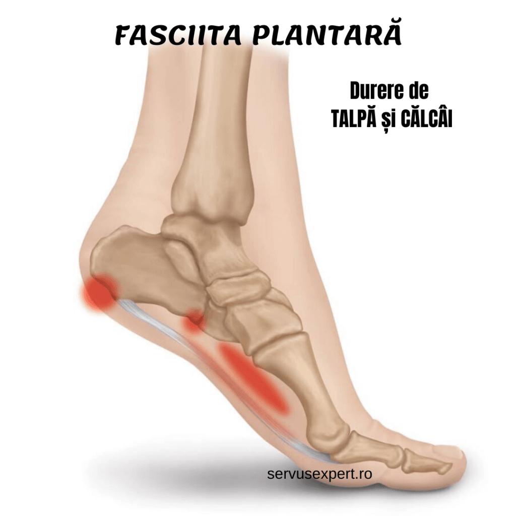 picior dureros sub călcâi și articulație