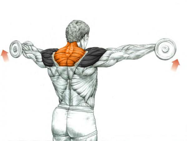 gelatină în tratamentul artrozei umărului durere la nivelul brațului articulației cotului după accidentare