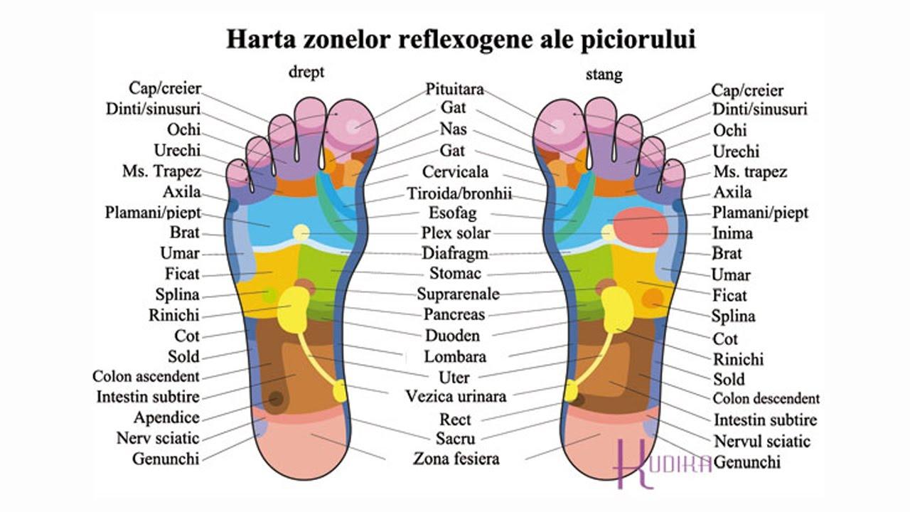 tratament de reflexoterapie articulară)