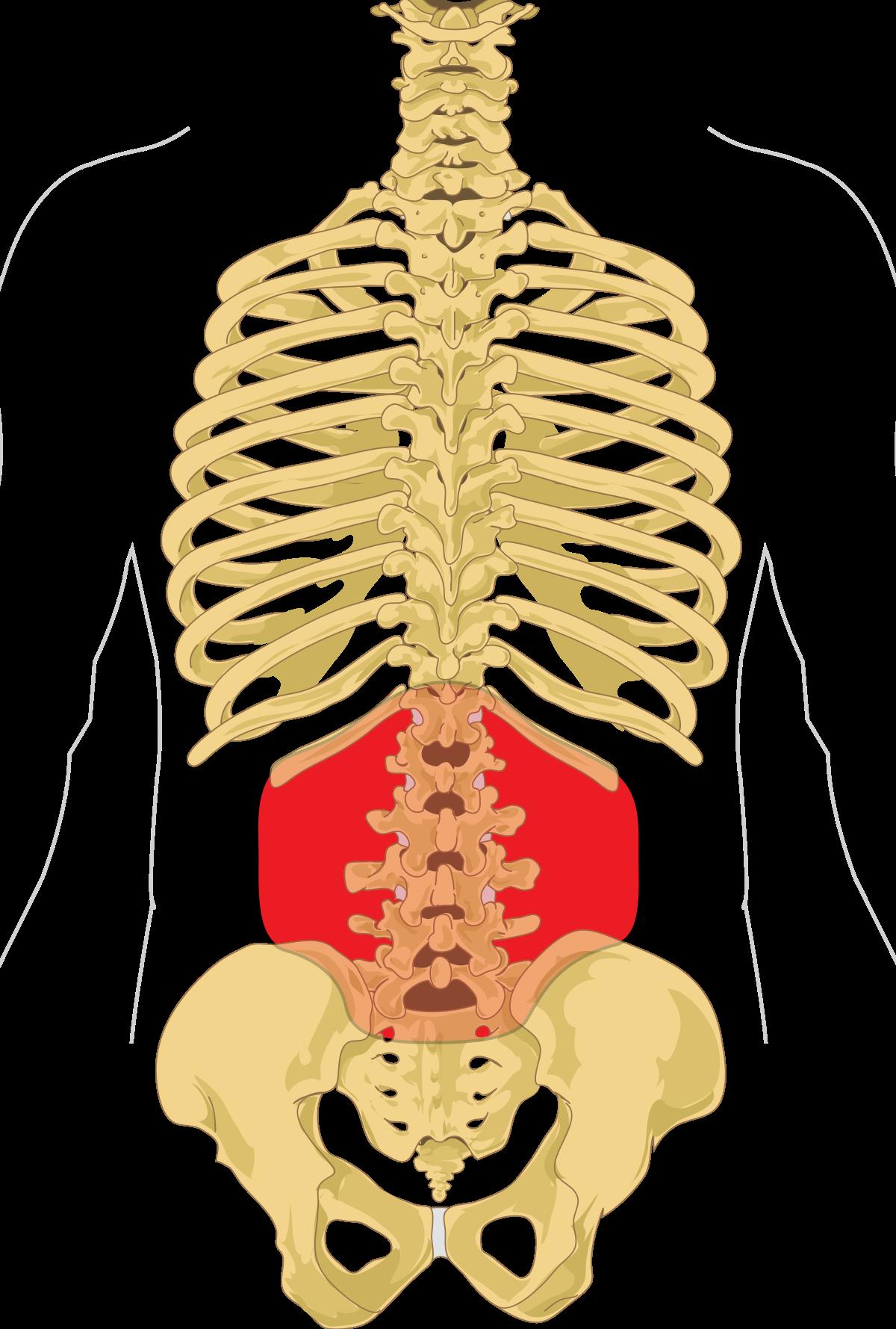 leziune articulară intervertebrală