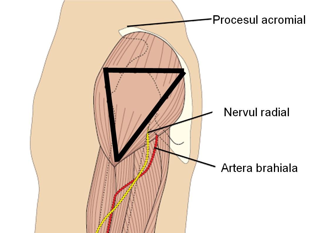durere în articulația șoldului după o injecție cum să tratezi o creștere a articulației