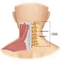 leziuni ale ligamentului leziunilor la cot
