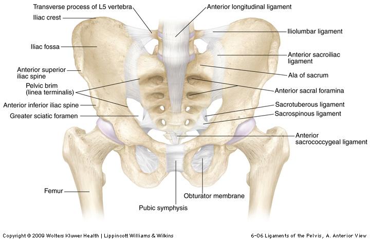 durerea în sacru dă articulației șoldului