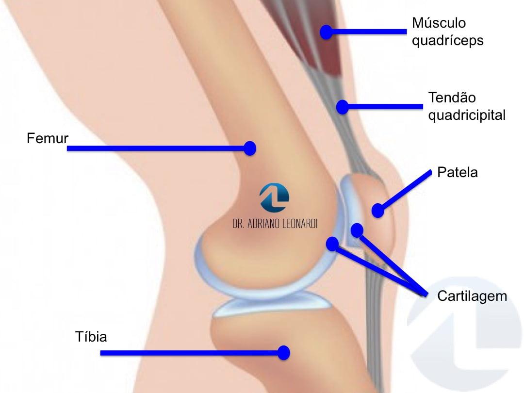 probleme articulare cu insuficiență hormonală