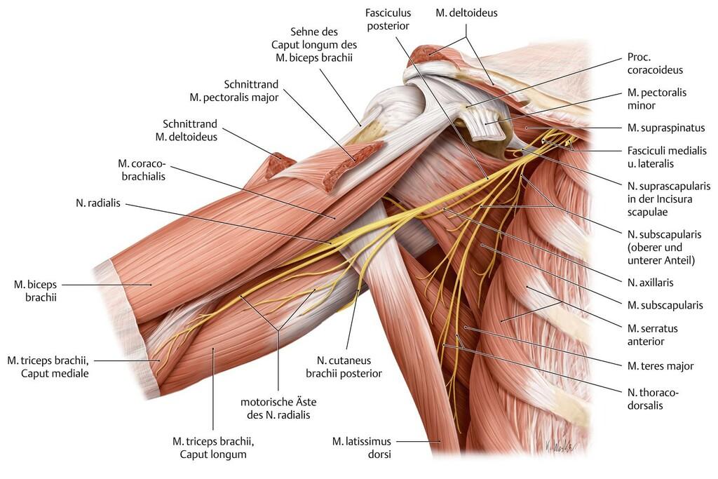 Inflamația țesutului periarticular al articulației șoldului