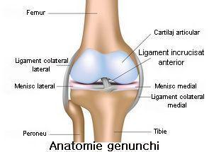 leziuni la genunchi)