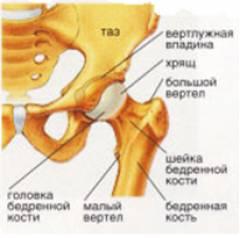 tratamentul leziunilor la genunchi