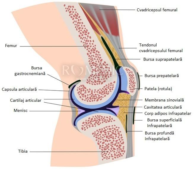 edem în jurul cauzei articulației genunchiului