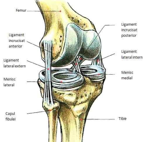 refacerea articulațiilor și ligamentelor după o fractură