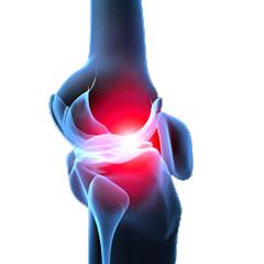 Cum influenteaza tratamentul cu condroitin sulfat cartilajul articular?
