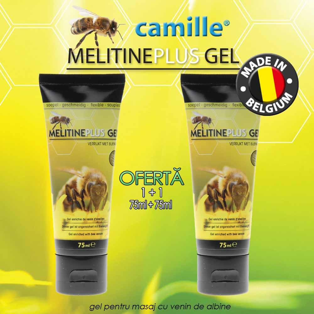 gel pentru articulații albine