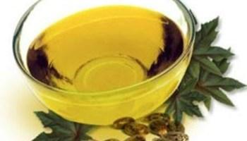 uleiul de ricin tratează rosturile)