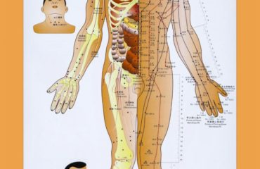 meridianul articular dureri de umăr cauzează noaptea