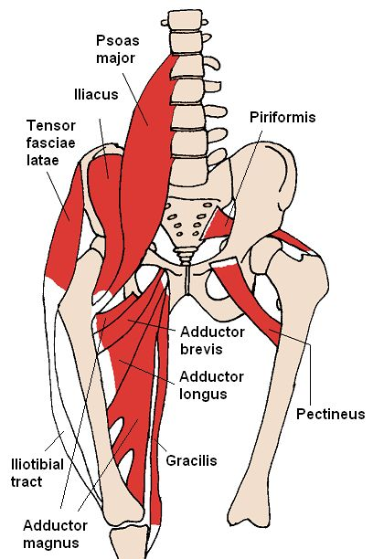 stadiul inițial de tratament pentru artroza genunchiului durere la nivelul brațului articulației umărului