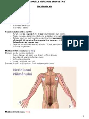 meridianul articular genunchiul dureri și gimnastică