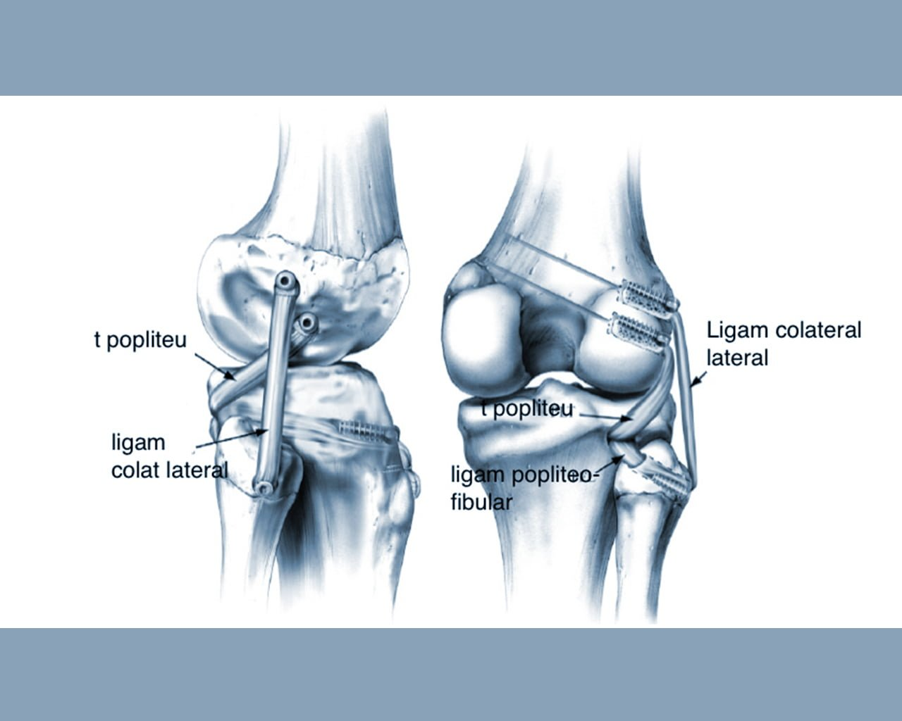 cum să tratați articulațiile dureroase ale picioarelor recenzii