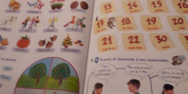 Pregătire comună franceză