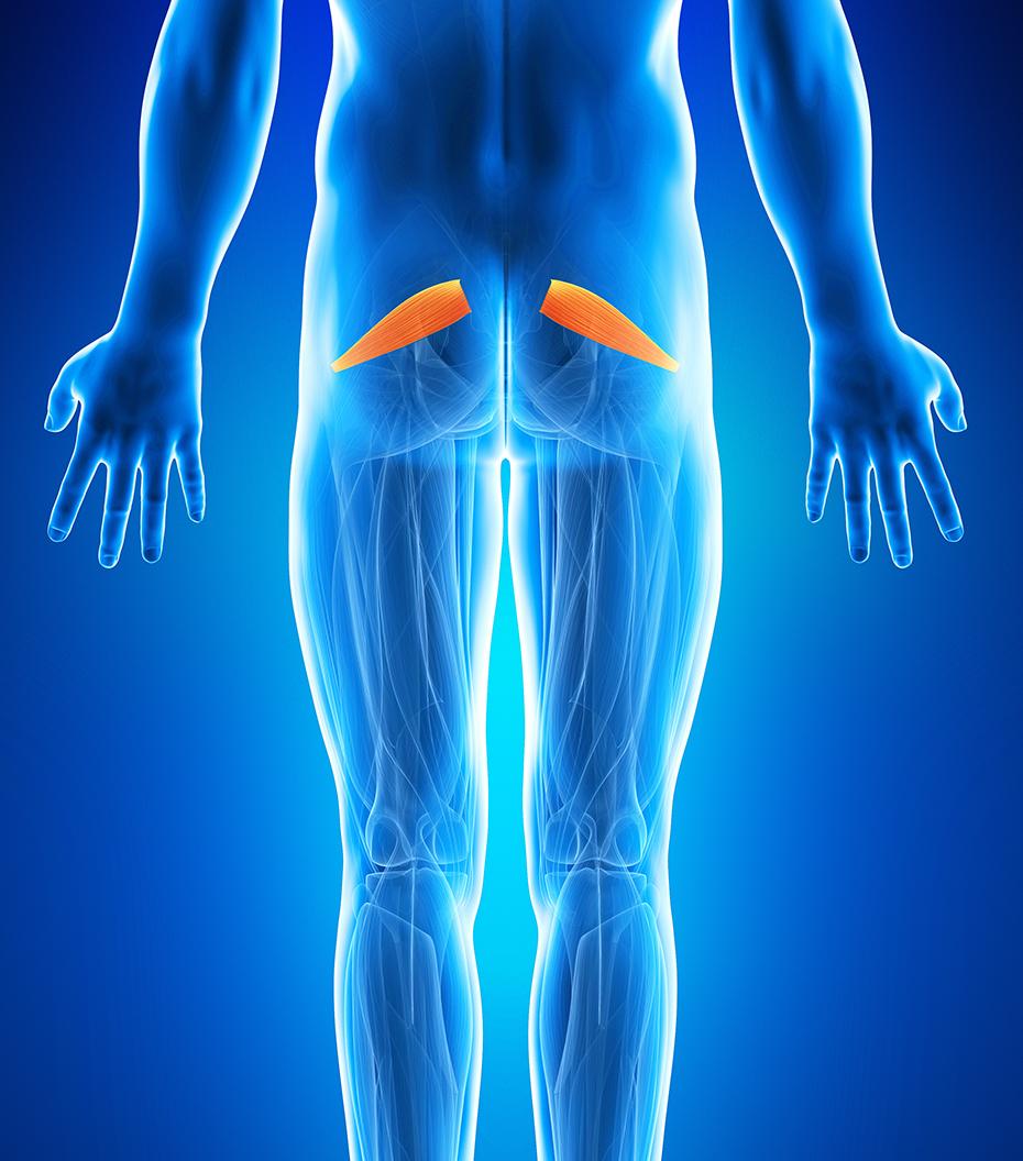 dureri de spate inferioare pe șoldul drept