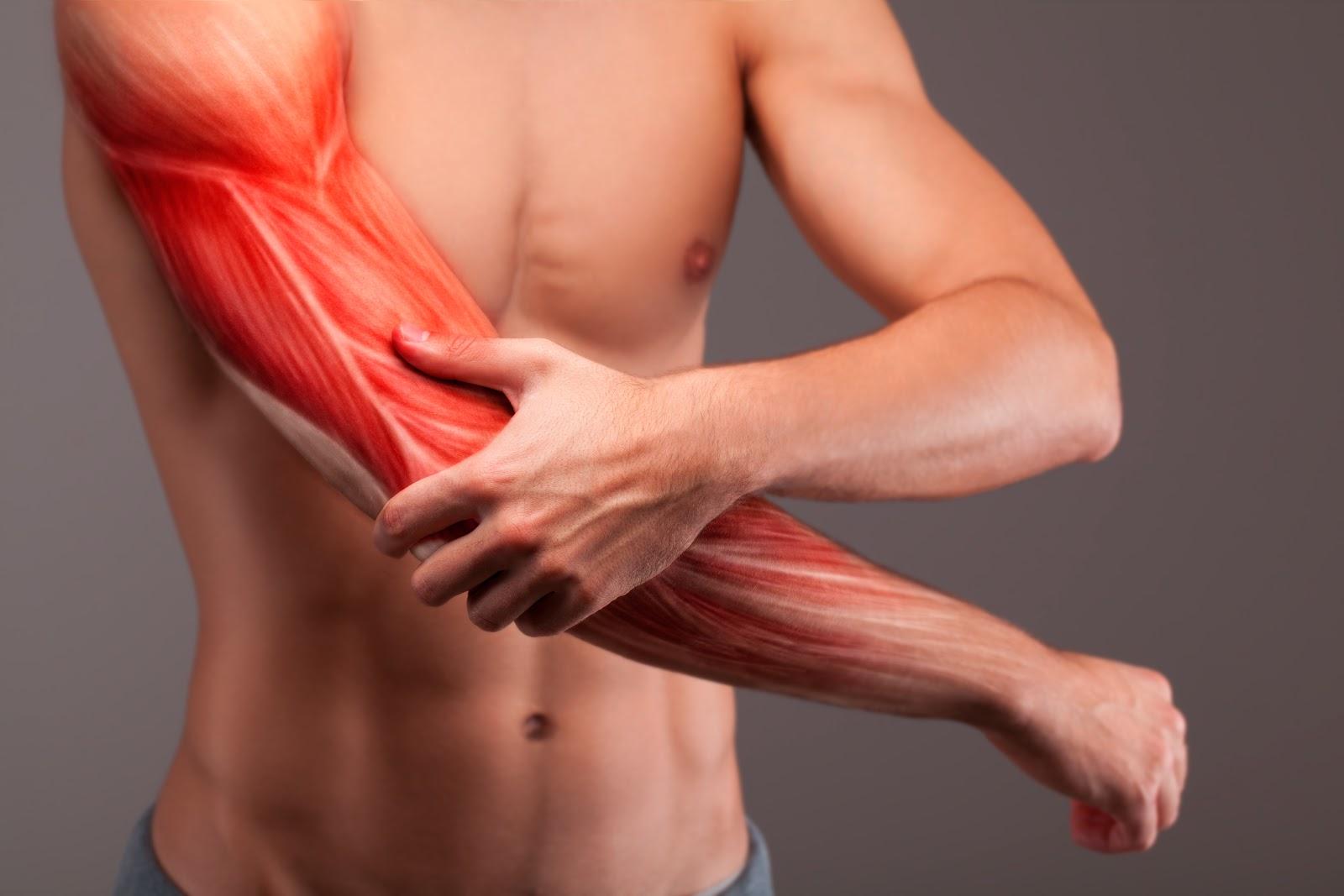remediu pentru durerea în mușchi și articulații