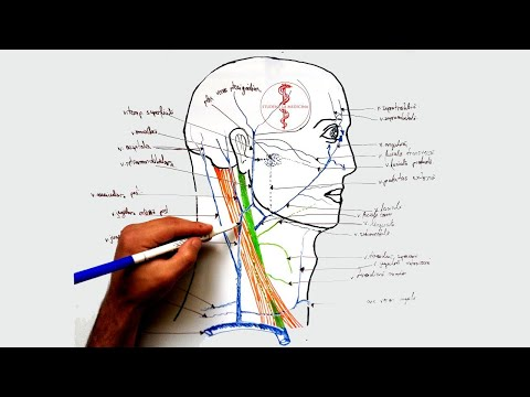 ungerea unguentului articulației genunchiului
