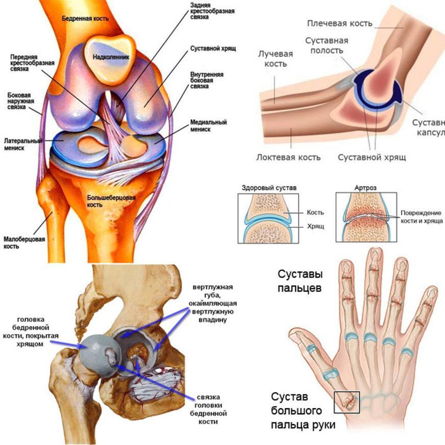 tratament cu artroză plasmoterapie)