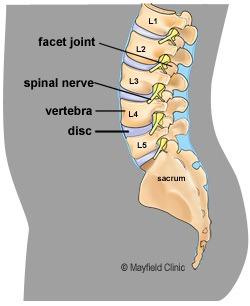 Dureri postpartum la nivelul articulației genunchiului - Навигация по записям