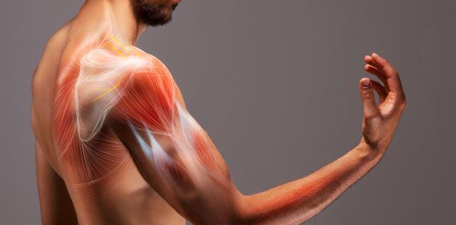 boli secundare ale articulațiilor membrelor)