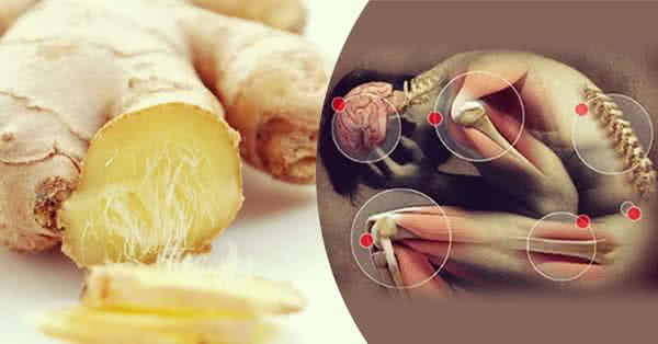 Tratament articular de condimente - 5 plante care combat durerile de articulaţii