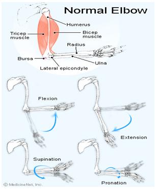 blocaj pentru durerea articulației cotului