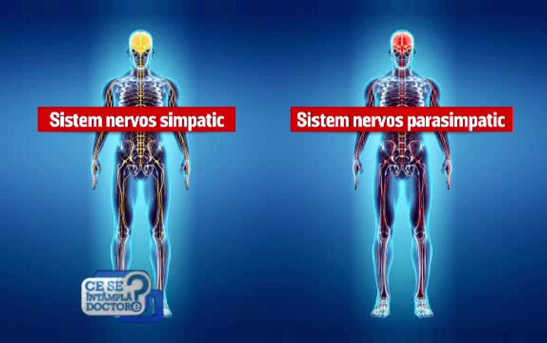 articulațiile și mușchii doare după stres)