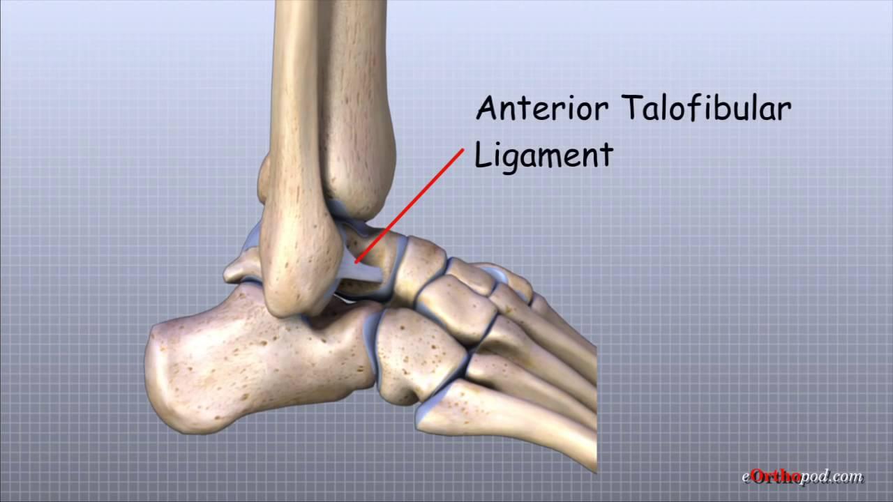 durere în partea din față a gleznei din care durere la genunchi