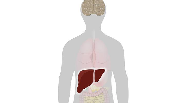 Infecţia cu virusul hepatitic C şi bolile reumatismale