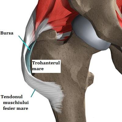 falsă bursită a tratamentului detașării mușchiului articulației umărului)