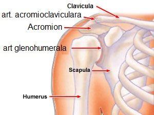 entorsă musculară în articulația umărului și tratament)